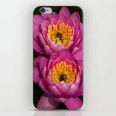 Two bees in a pod iPhone & iPod Skin