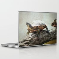 turtle Laptop & iPad Skins featuring turtle by Tanja Riedel