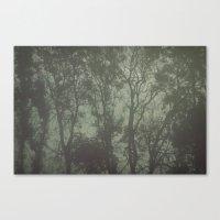 Misty Trees Canvas Print