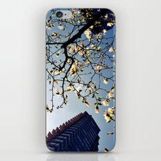 here is spring iPhone & iPod Skin