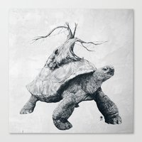 Tortoise Tree Canvas Print