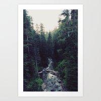 Oregon x Rainier Creek Art Print