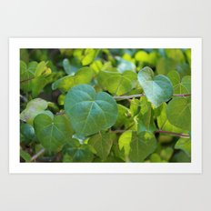 leaf. Art Print