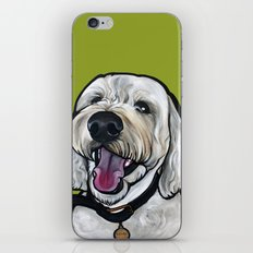 Kermit the labradoodle iPhone & iPod Skin