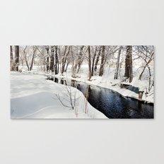 Snowy Creek Canvas Print