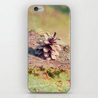 Pine Cone 016 iPhone & iPod Skin