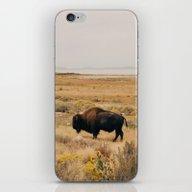 Bison Bull On Antelope I… iPhone & iPod Skin