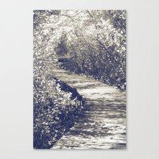 Fairy Walk II Canvas Print