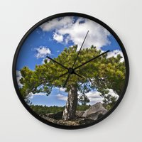 Pine Tree on the Ground of the Mount Etna Wall Clock