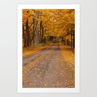 Fall Rural Country Road No 133 Art Print