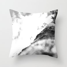 Eyes Aloft I Throw Pillow