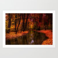 flowing through the colors of fall Art Print