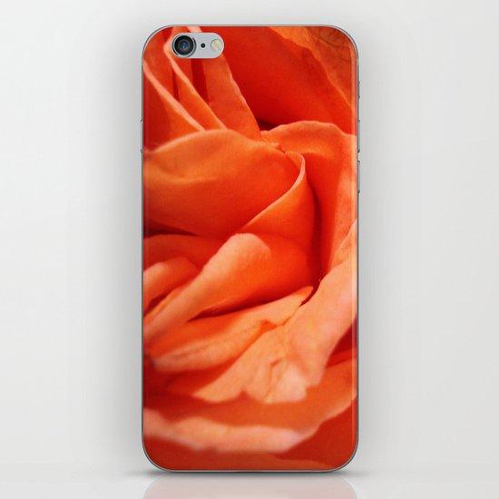 Rosa Vieja iPhone & iPod Skin