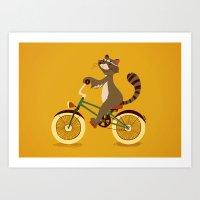 Raccoon On A Bicycle Art Print