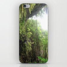 Jungle Fever iPhone & iPod Skin