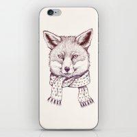 Fox And Scarf iPhone & iPod Skin