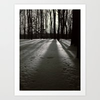 Wooded Winter Art Print