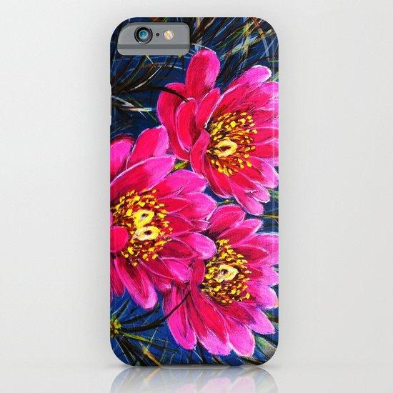 Cactus flowers ( Close up) iPhone & iPod Case