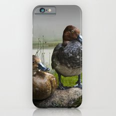 Canvasback Duck Pair by a Pond iPhone 6 Slim Case