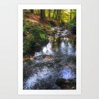 Bentley Brook Autumn Art Print