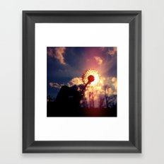 Dandelion in the Sun Framed Art Print