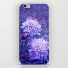 Meadow of Dreams iPhone & iPod Skin