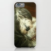 Dog iPhone 6 Slim Case