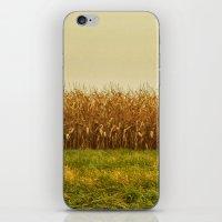 Corn Lines iPhone & iPod Skin