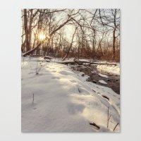 Snowy And Sunny Canvas Print