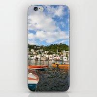 Grenada iPhone & iPod Skin