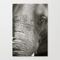 L'Éléphant Canvas Print