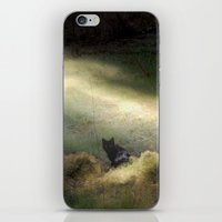 Bewitched iPhone & iPod Skin