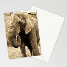 Elephant. Stationery Cards