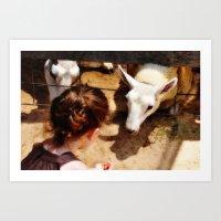 Girl Feeds Sheep Art Print