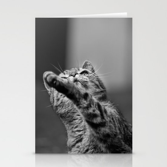 my little cat Stationery Card