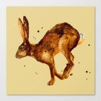 Hare, hare cushion, rabbit pillow Canvas Print