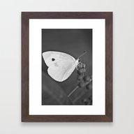 Flutter II Framed Art Print