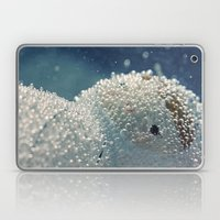 Polar Freeze Laptop & iPad Skin