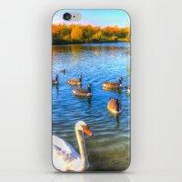 The Autumn Lake iPhone & iPod Skin