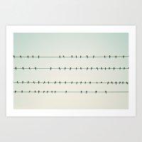 Birds On Four Wires  Art Print
