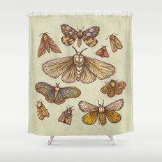 Moths Shower Curtain