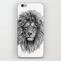 Lion-  Portrait SK073 iPhone & iPod Skin