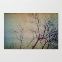 Light Leaked, Tree. Canvas Print