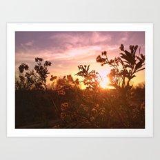 Riverside Weeds Art Print