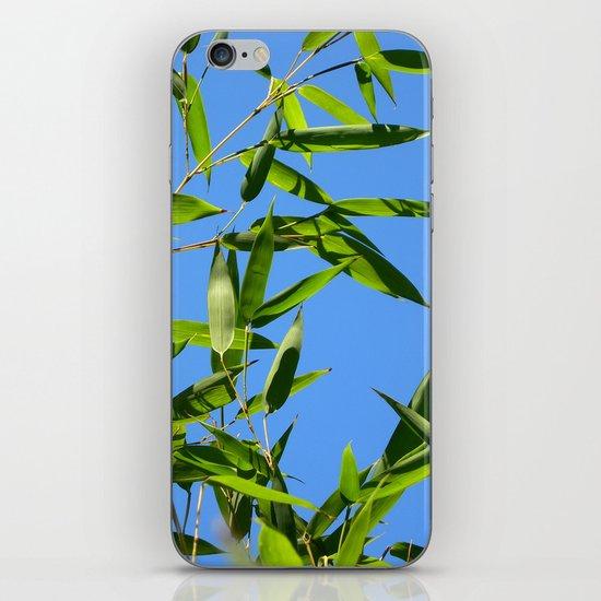 green bamboo II iPhone & iPod Skin