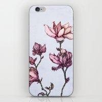 Spring Magnolias iPhone & iPod Skin