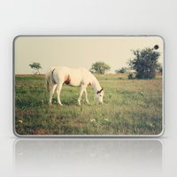 It's not a unicorn! It's a white horse! Laptop & iPad Skin