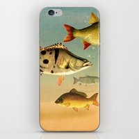 Magical iPhone & iPod Skin