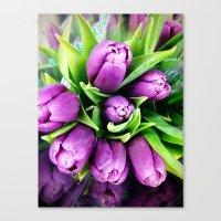 Pretty Purple Pleasures Canvas Print