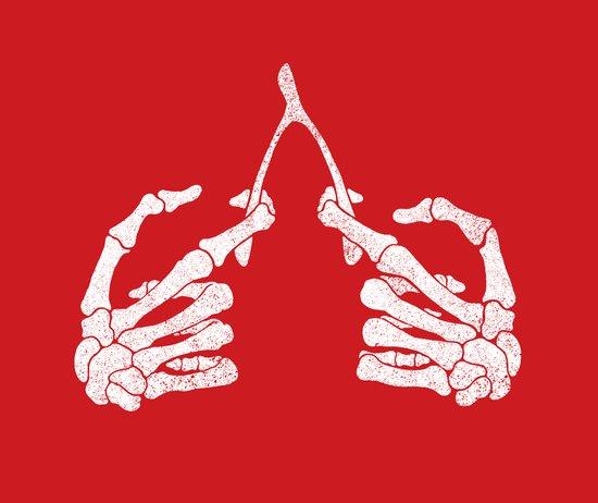 Wishbones Art Print
